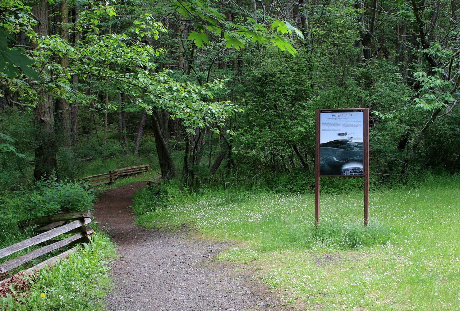 Young Hill Trailhead