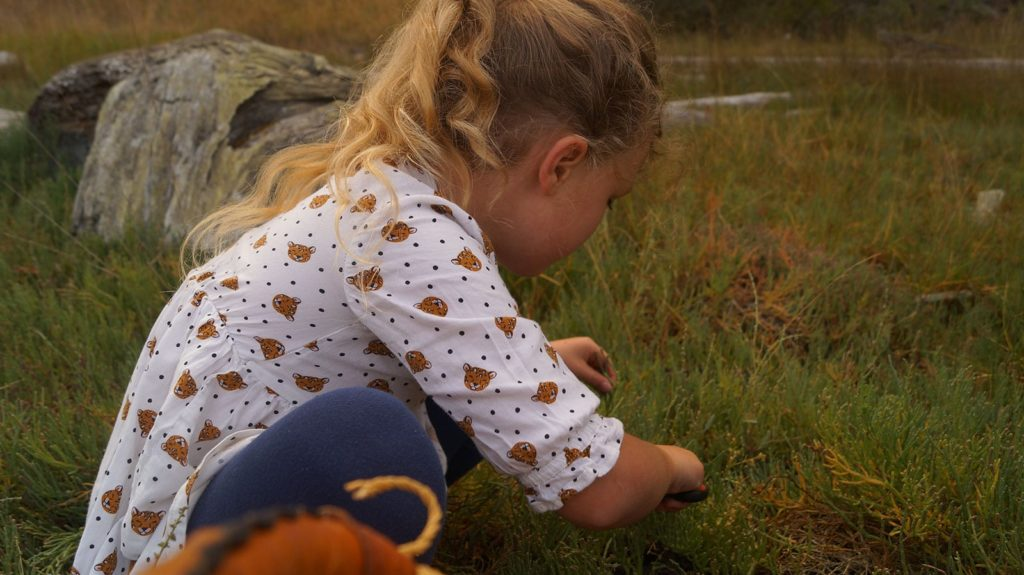 Foraging for Sea Beans