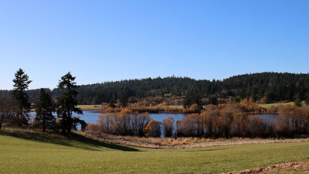 Zylstra Lake Preserve