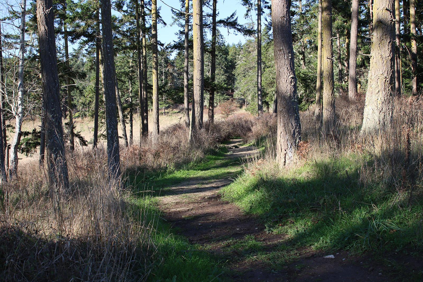 Zylstra Lake Preserve Trails
