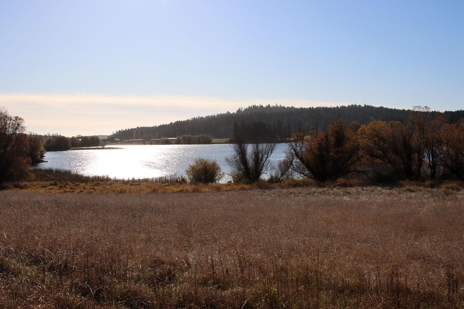 Zylstra Lake Preserve Views