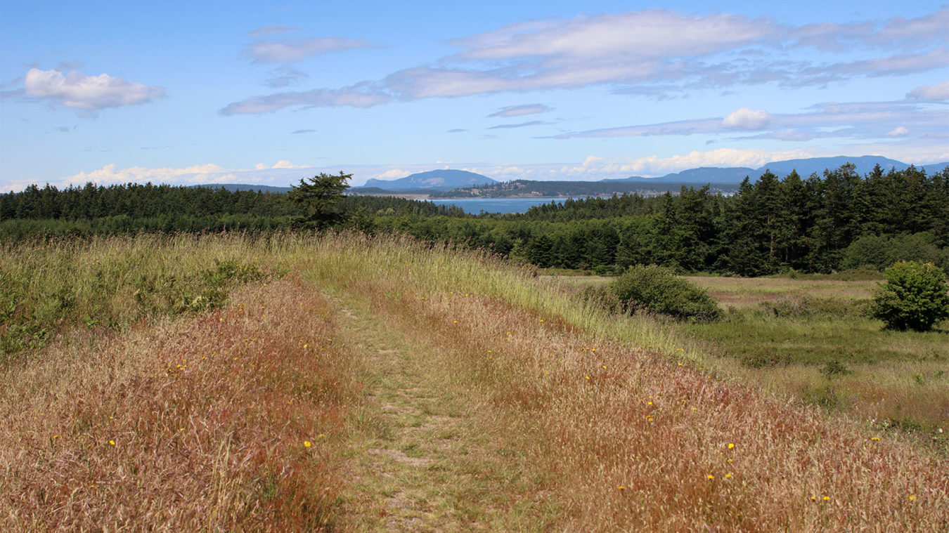 American Camp south redoubt